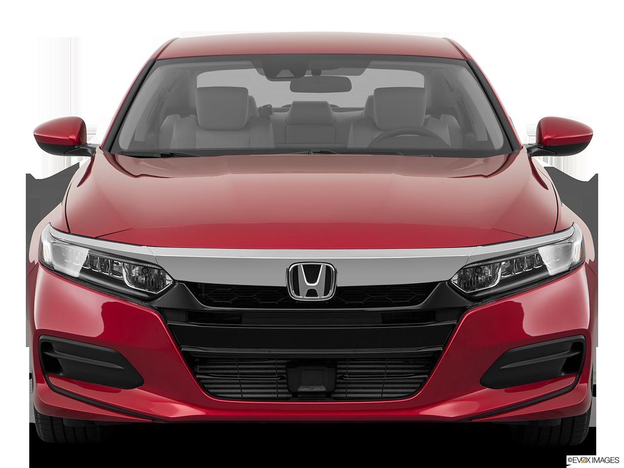 2019 Honda Accord photo