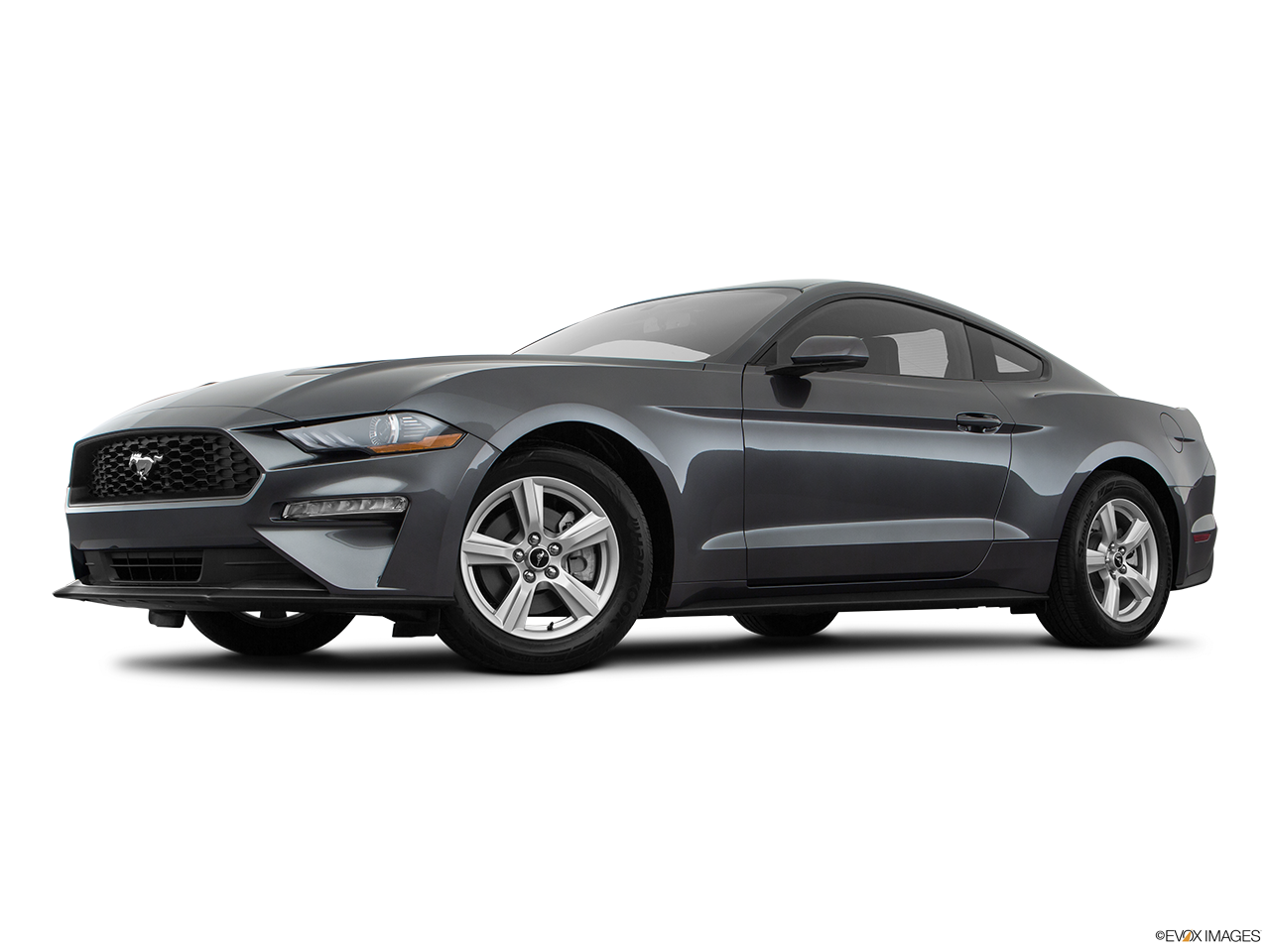 2019 Ford Mustang photo