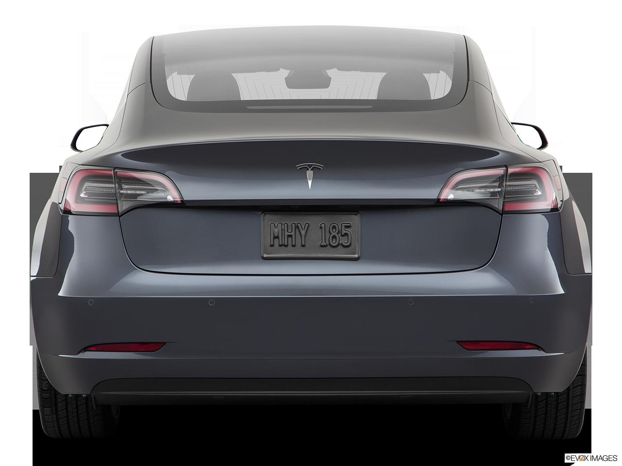 2019 Tesla Model 3 photo