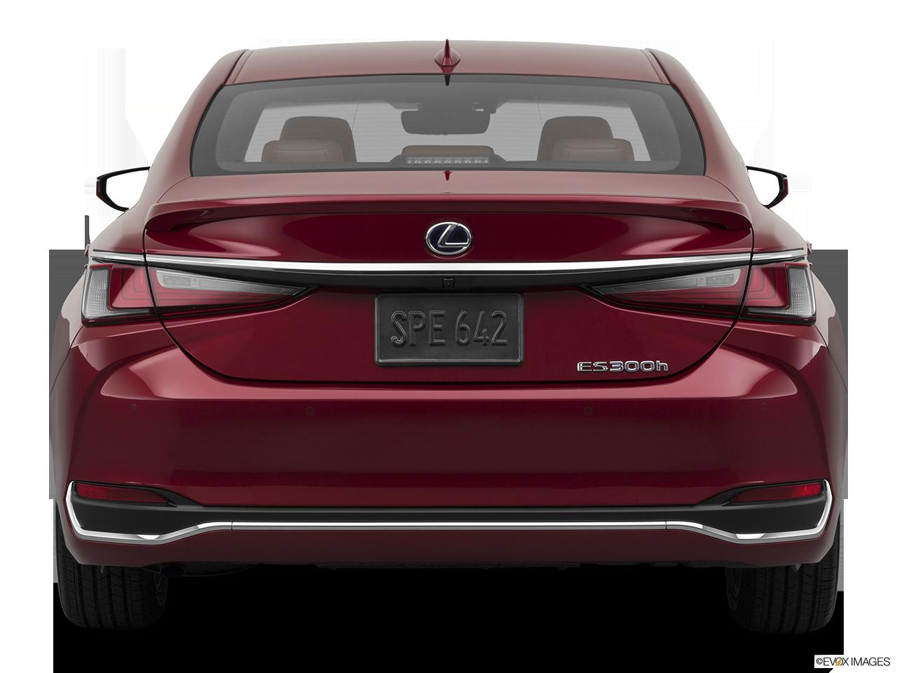 2020 Lexus ES 300h photo